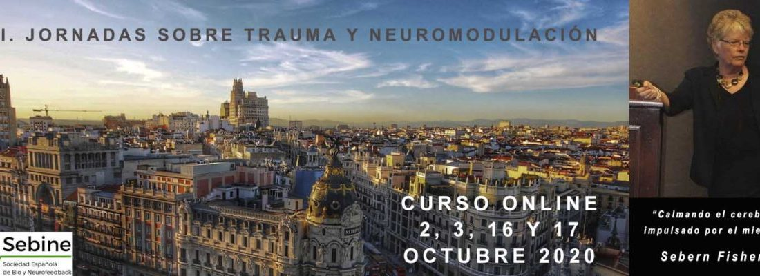 SEBINE 2020 Conference on Trauma and Neuromodulation